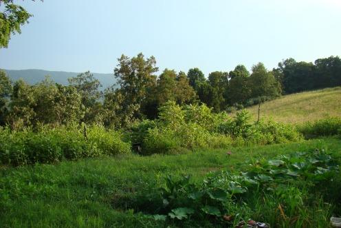 valleyview2